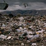 a mountain of waste